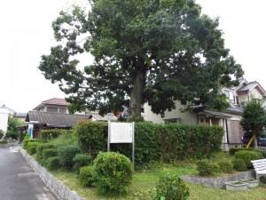 shiseki003